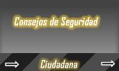 Consejos de Seguridad Ciudadana Costa Rica